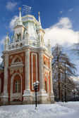 Russia Tsaritsino Estate park in Moskow — ストック写真