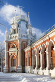 Tsaritsino Estate park in Moskow — ストック写真