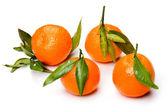 Mandarin close up — Stock Photo