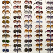 Rack with sunglasses close up — Stock Photo