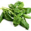 Basil — Stock Photo #4997128