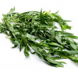 Tarragon close up — Stock Photo #4997313