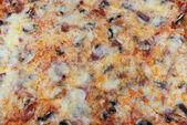披萨饼 — 图库照片