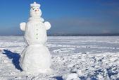 Snowman on a wintry sunny day — Stock Photo