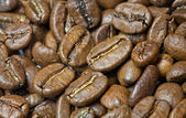 Café de grano — Foto de Stock