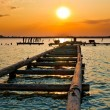 Sunset Jetty - Stock Photo
