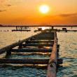 Stock Photo: Sunset Jetty