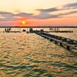 Sunset Jetty — Stock Photo