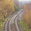 Train track covered with fallen leaves — Stock Photo