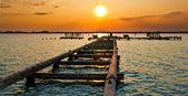 Sunset Jetty — Stock Photo