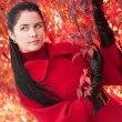 Young pretty woman in red coat at the autumn park. - Stock fotografie