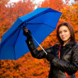 The woman with a dark blue umbrella, in autumn park — Stock Photo