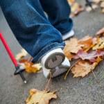 Nordic walking race on autumn trail — Stock Photo