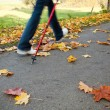 Nordic walking race on autumn trail - motion blur — Stock Photo