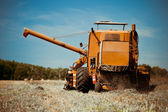 Combine harvester working in a wheat field — Stock Photo