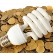 Stock Photo: Energy Saving
