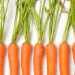 Stock Photo: Carrots on White