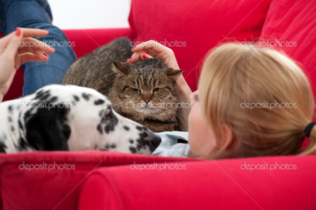 Lying on red sofa young woman with  cat and dalmatian dog — Stock Photo #3932480