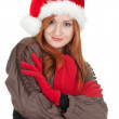 Stock Photo: Smiling Christmas woman