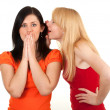 Two young girlfriends talking — Stock Photo