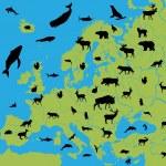 zvířata z Evropy — Stock vektor