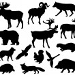Animals of Europe - Stock Vector