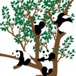 Panda on the tree — Stock Vector