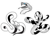 Tatouage de serpent — Vecteur