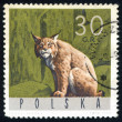 Stock Photo: Postage stamp