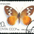 Postage stamp — Stock Photo #5349174