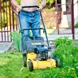Stock Photo: Man cutting the grass with the mower