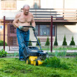 Royalty-Free Stock Photo: Man cutting the grass with the mower