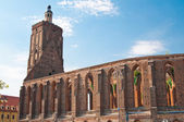 Ruins of gothic cathedral — Stock Photo