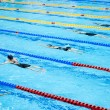 Стоковое фото: Swimmers swimming in pool