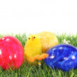 Stock Photo: Easter eggs and chicks on meadow