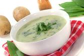 Wild garlic soup — Foto Stock