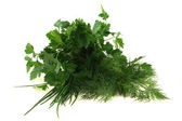 Culinary herbs — Stock Photo