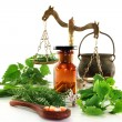 Stock Photo: Naturopathy