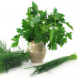 Stock Photo: Culinary herbs