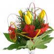 Yellow tulips bouquet - Foto Stock