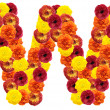 Alphabet of flowers - Stock Photo