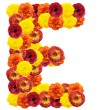 Alphabet of flowers - Foto de Stock