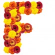 Alphabet of flowers - Foto Stock