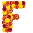 Alphabet of flowers - Photo