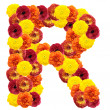 Alphabet of flowers - Stockfoto