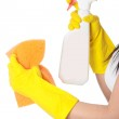 Woman with sponge and spray. — Stock Photo