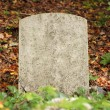 Single old grave - Stock Photo