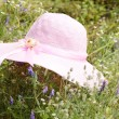 Royalty-Free Stock Photo: A summer pink hat laying at meadow