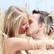 Stock Photo: Beautiful couple in wheat field