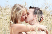 A beautiful couple in wheat field — Foto Stock